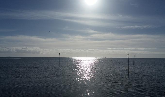Nordsee Horumersiel