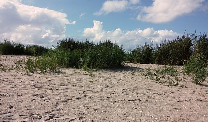 Sandstrand Horumersiel Schillig